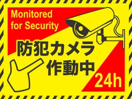 security-monitor